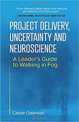 Project Delivery, Uncertainty and Neuroscience